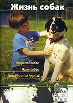 Animal Planet. Жизнь собак, 2006 - смотреть онлайн