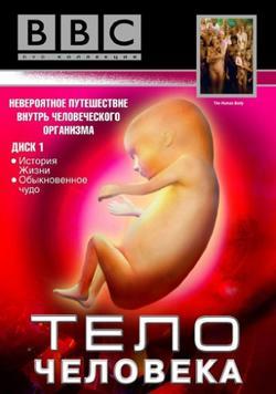 BBC: Тело человека, 1998 - смотреть онлайн
