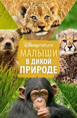 Малыши в дикой природе, 2016 - смотреть онлайн