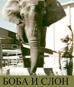 Боба и слон, 1972 - смотреть онлайн