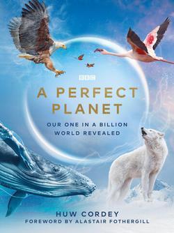 Идеальная планета , 2021 - смотреть онлайн