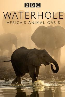 Waterhole: Africa`s Animal Oasis , 2020 - смотреть онлайн