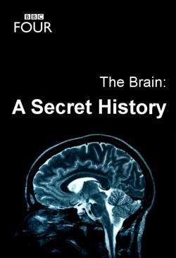 Тайны мозга, 2011 - смотреть онлайн
