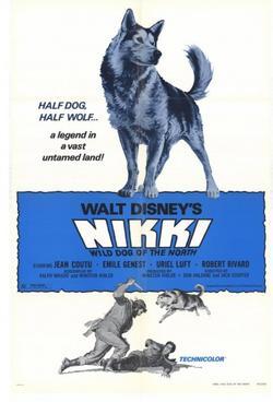 Дикий пес Севера, 1961 - смотреть онлайн
