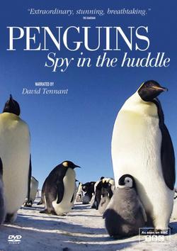 Пингвины: Шпион в толпе, 2013 - смотреть онлайн