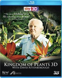 В королевстве растений, 2012 - смотреть онлайн