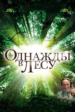 Однажды в лесу, 2013 - смотреть онлайн