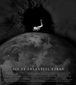 Шум небесных птиц, 2006 - смотреть онлайн