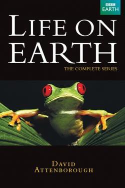 Жизнь на Земле, 1979 - смотреть онлайн