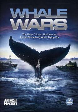 Китовые войны, 2008 - смотреть онлайн